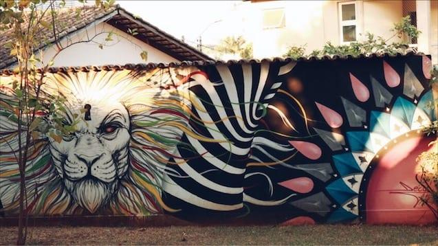 Grafite no Bosque dos Pássaros, no Setor Sul, em Goiânia