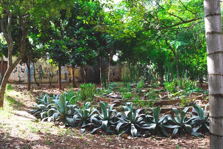 Jardim dentro do Bosque dos Pássaros, um dos lugares mais visitados do Setor Sul