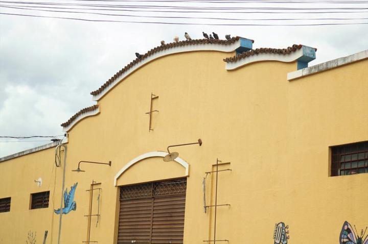 Agenda do fim de semana em Goiânia tem samba, feijoada e forró