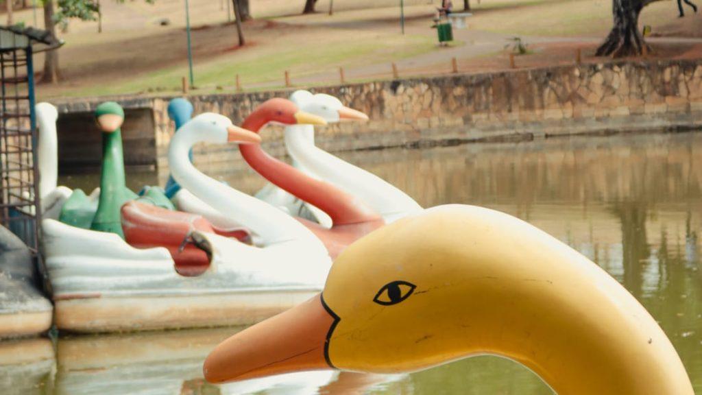 Pedalinho localizado no Parque Lago das Rosas