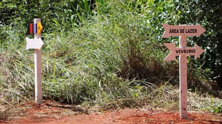 Floresta Nacional de Silvânia: um santuário de preservação do Cerrado