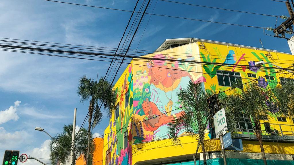 3 novos murais para você visitar e conhecer em Goiânia
