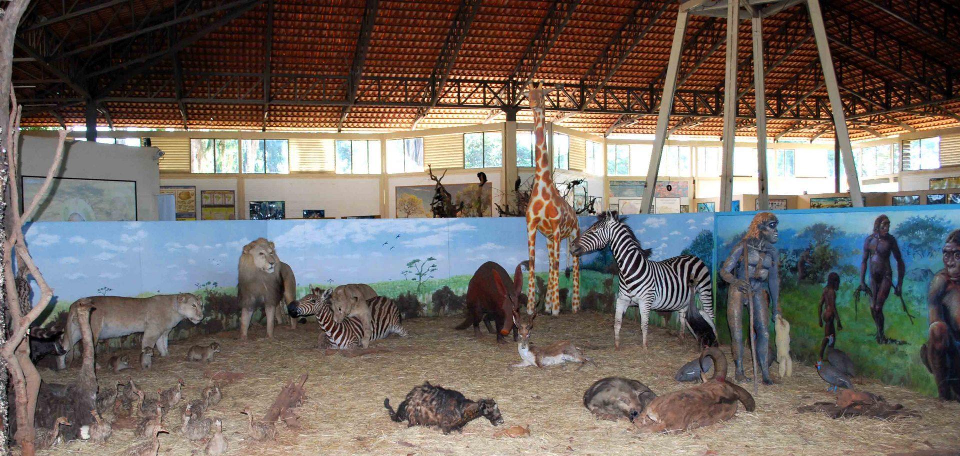 Memorial do Cerrado: excelente passeio cultural em Goiânia