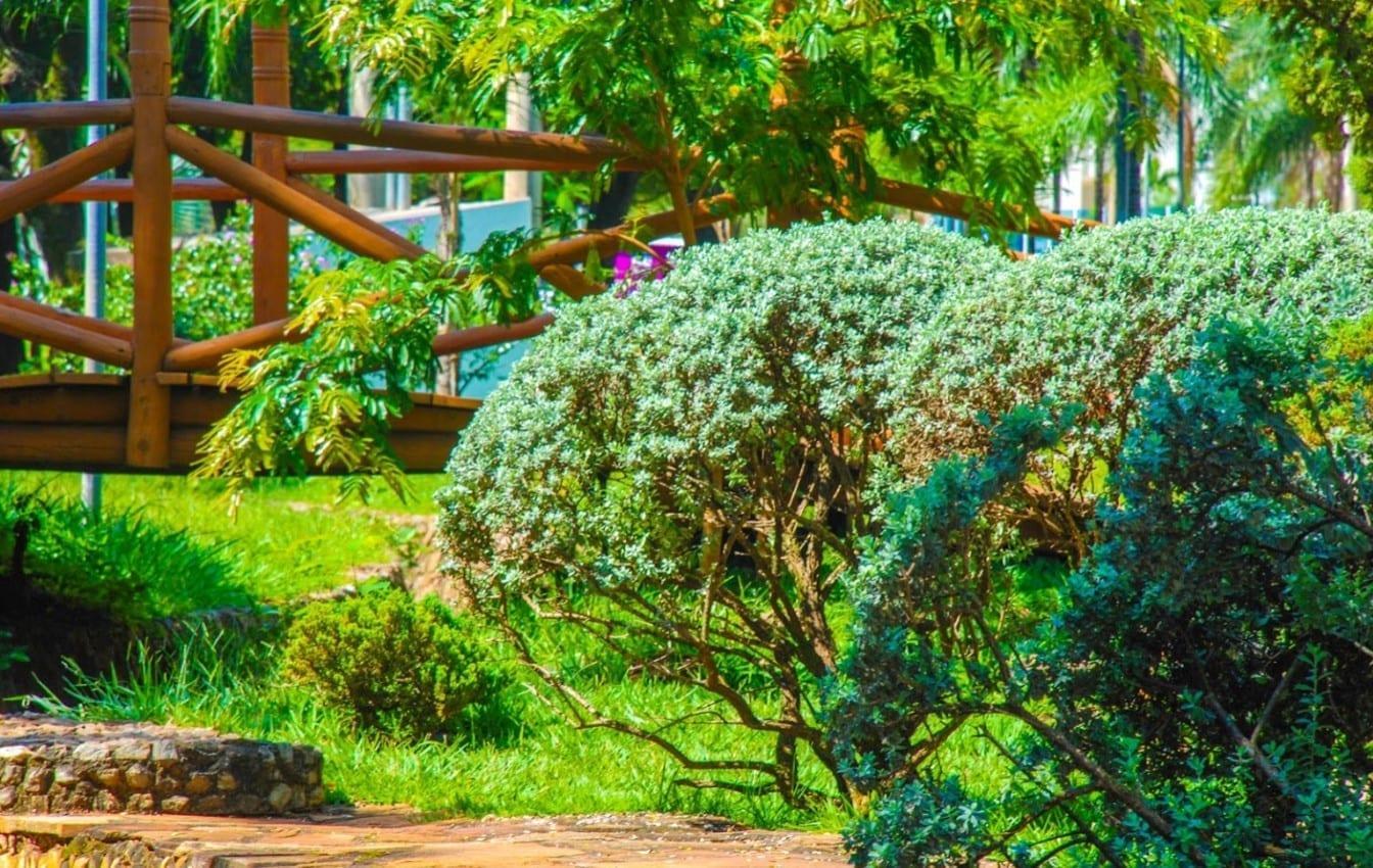 Parque Flamboyant: boa alternativa para quem busca tranquilidade