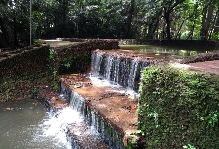 Bosque dos Buritis/ Goiânia