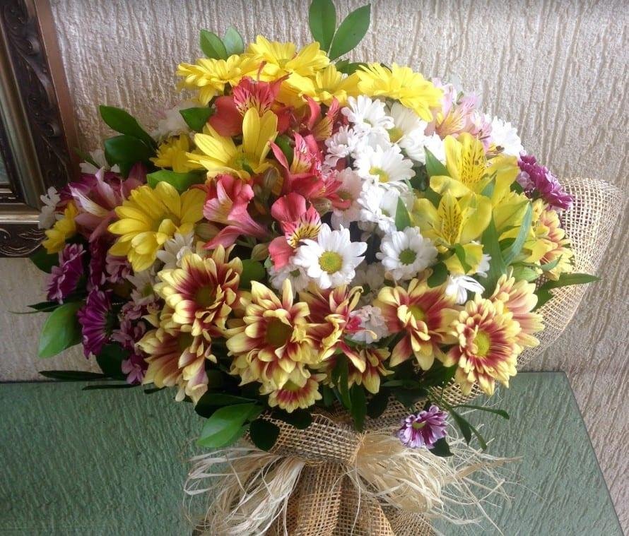 floriculturas em brasília