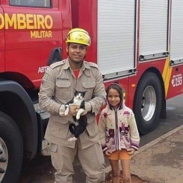 Bombeiros resgatam cachorro preso em motor de carro, em Rio Verde
