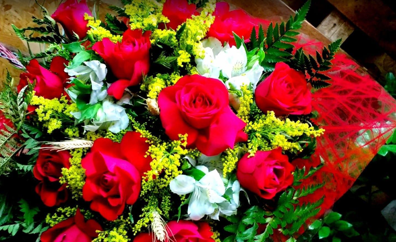 floricultura Trindade